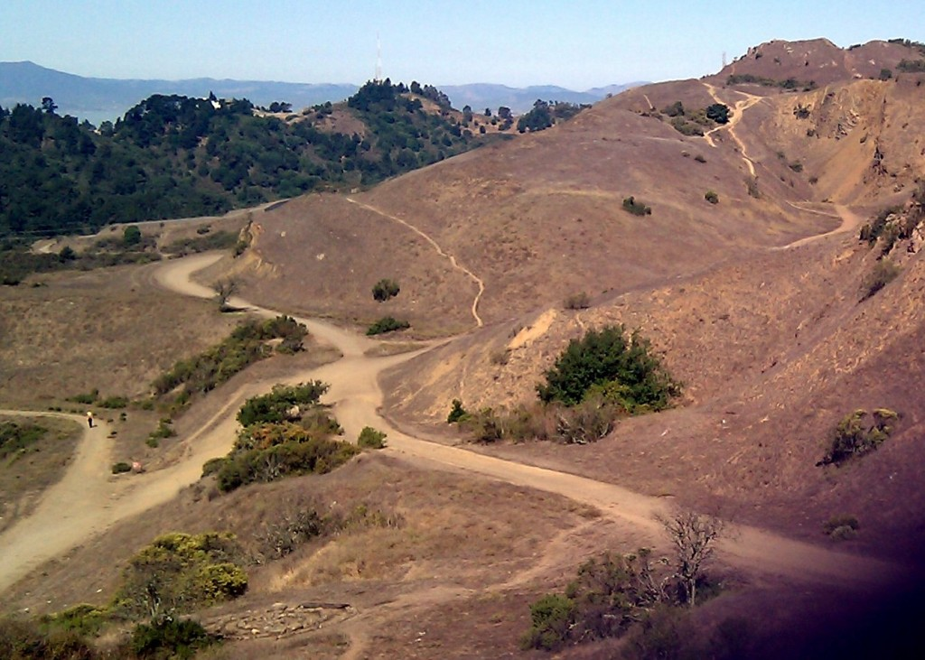 Paths in Sibley Volcanic Regional Preserve